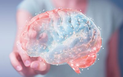 Your brain on branding: Dopamine and Branding